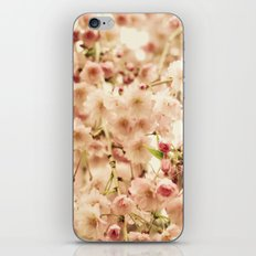 Follow Your Bliss iPhone & iPod Skin