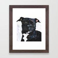 Theo the Pittie Framed Art Print