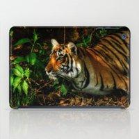 Bengal Beauty iPad Case