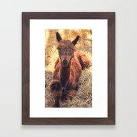 Llama Tude Framed Art Print