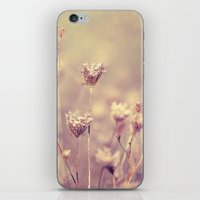 Winter Queen Anne's Lace  iPhone & iPod Skin