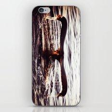 Whale tail. iPhone & iPod Skin