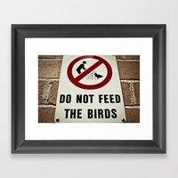 Don't Feed The Birds Framed Art Print