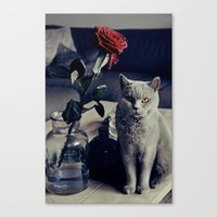 Diesel with rose Canvas Print