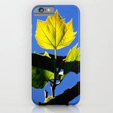 Spring Leaf. iPhone 6 Slim Case