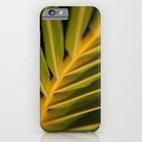 Niu - Cocos nucifera - Hawaiian Coconut Palm Frond iPhone 6 Slim Case