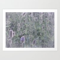Summer Thistle Forest Art Print
