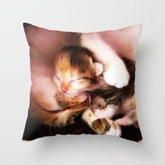 Cats hug Throw Pillow