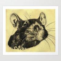 Rat 4 Art Print