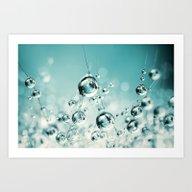 Cactus Candy Blue Art Print
