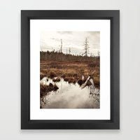 In The Marsh Framed Art Print