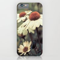 iPhone & iPod Case featuring Soft white cone flower  by Eye Shutter to Think