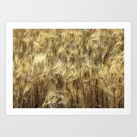 Whole Grain Art Print