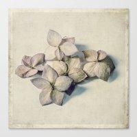 five little blooms Canvas Print