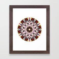 Donkey Flower Kaleidoscope  Framed Art Print