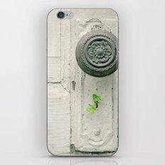 Lock & Key iPhone & iPod Skin