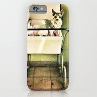 Hell O Pretty iPhone 6 Slim Case
