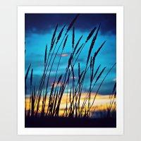 Western Sky Art Print
