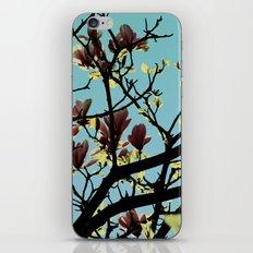 Pure Love iPhone & iPod Skin