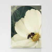 Wild Flower In White Stationery Cards