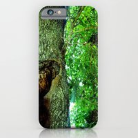 iPhone & iPod Case featuring treehole2 by Lindsey
