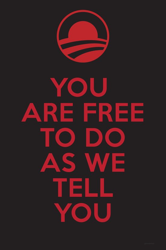 Obama meets Orwell / Freedom Art Print
