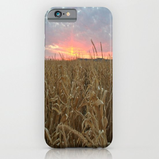 Corn Maze Sunset iPhone & iPod Case