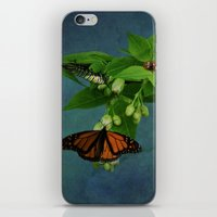 A Bugs World iPhone & iPod Skin