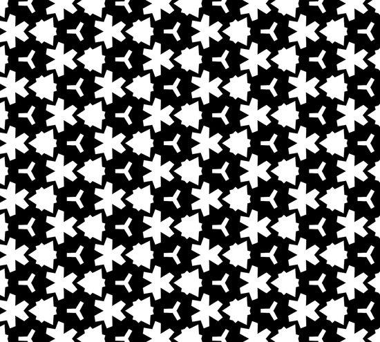 Weizigt Black & White Canvas Print