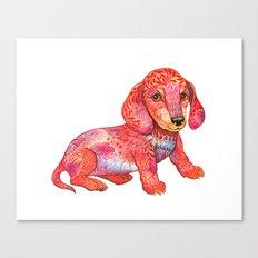 Mini Dachshund  Canvas Print