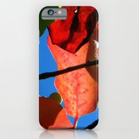 iPhone & iPod Case featuring More Fall Leaves by Stacy Frett