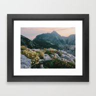 Mountain Flowers At Sunr… Framed Art Print