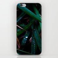 Dark Leaves iPhone & iPod Skin