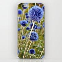 BLUE WILD THISTLE iPhone & iPod Skin