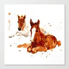HORSE art, horse paintings, foal painting, watercolor horses, watercolour horse Canvas Print