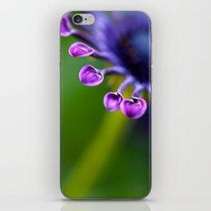 Teaspoon Flower iPhone & iPod Skin