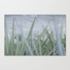 Peaceful Summer gift Canvas Print