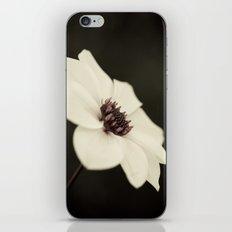Brave Spirit iPhone & iPod Skin