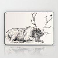Stag // Graphite Laptop & iPad Skin
