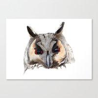 Long Eared Owl Canvas Print