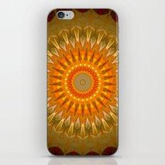 Native War Dance iPhone & iPod Skin