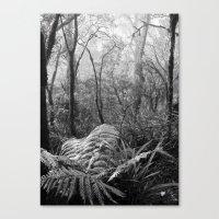 Rainforest No.7 Canvas Print
