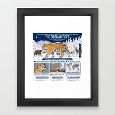 The Wild Ones: Siberian Tiger (info) Framed Art Print