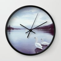 Swans on the shore of Lake Windermere at dawn. Cumbria, UK. (Shot on film). Wall Clock