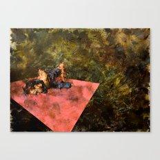 Pink Wall Canvas Print