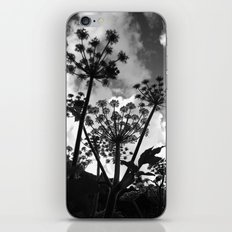 Shadow iPhone & iPod Skin