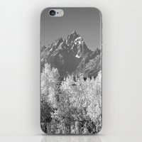 iPhone & iPod Skin featuring White Trees by lokiandmephotography