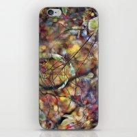Autumn Rainbows iPhone & iPod Skin