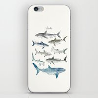 Sharks iPhone & iPod Skin