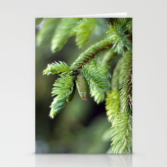 Baby Pine Cone Stationery Card